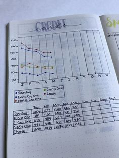 Credit Card tracker in bullet journal - Debt Payoff Credit Card - Calculate your credit debt and payoff date instantly. - Credit Card tracker in bullet journal To Do Planner, Passion Planner, Budget Planner, Budget Spreadsheet, Monthly Budget, Budget Book, Happy Planner, Budget Notebook, Planner Tips