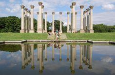 3. Capitol Columns