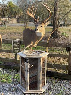 Wood Deer Head, Deer Heads, Deer Antlers, Deer Hunting Decor, Deer Head Decor, Taxidermy Decor, Taxidermy Display, Deer Mount Decor, Tree Stand Hunting