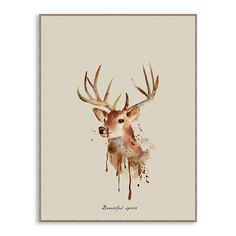 Triptych Watercolor Deer Head Art Wall Prints Poster Cottage Animal Pictures Living Room Home Decor Paintings No Frames Watercolor Deer, Watercolor Animals, Wall Art Prints, Poster Prints, Canvas Prints, Home Decor Paintings, Rooms Home Decor, Triptych, Spray Painting