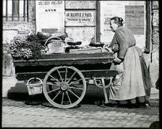 cliché de Louis Vert, métiers du vieux Paris, 1900, marchande de 4 saisons