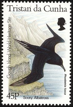 Sooty Albatross stamps - mainly images - gallery format Rare Stamps, Vintage Stamps, Postage Stamp Art, Sea Birds, Stamp Collecting, Saint Helena, At Least, Gallery, Places