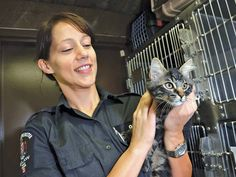 Pretty kitty: Dolce, a kitten at the New Westminster Animal Shelter, recently enjoyed some time with animal services officer Margie Fox. Pretty Kitty, Pretty Cats, Westminster, Animal Shelter, Kitten, Fox, City, Animals, Animal Shelters