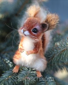 Click VISIT link above for more info Needle Felted Animals, Felt Animals, Cute Baby Animals, Needle Felting, Sleepy Animals, Felt Pictures, Baby Squirrel, Felt Baby, Animal Control