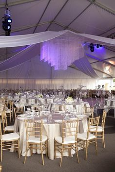 Corporate Event Rentals - gold and white