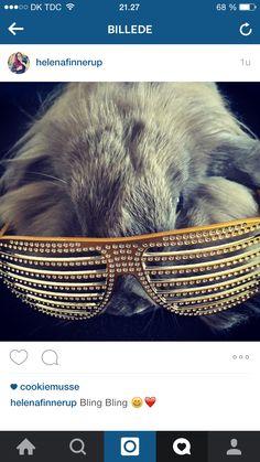 Billede taler for sig selv ❤️  Siger bare hun er så skøn og men foto graf talendt kanin