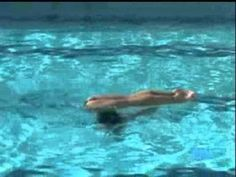 355e.- Porpoise Spinning