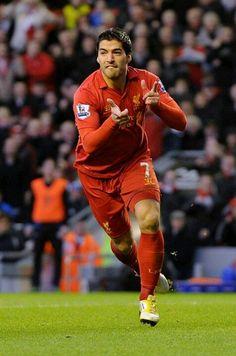Luis Suarez celebrates. #LFC