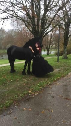 Dark Witch, Horses And Dogs, Horse World, Gothic Outfits, Cute Funny Animals, Beautiful Horses, Hair Pins, Tik Tok, Equestrian