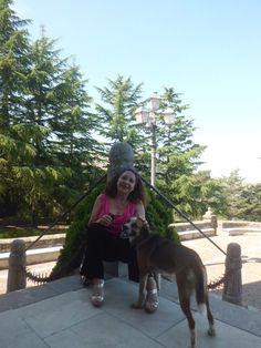 Cagnolino incontrato a al santuario di Gibilmanna, altitudine 800mtr sulle Madonie, Cefalù, Palermo. Stiamo sorridendo allo stesso modo :-)