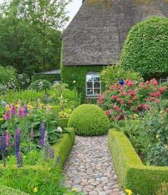 Cottage garden design with hedges and stone path