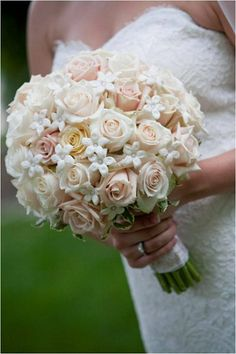 Classic Ivory White Bouquet Rose Stephanotis Wedding Flowers Photos & Pictures - WeddingWire.com