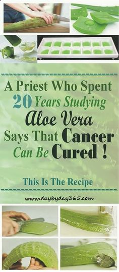 A PRIEST WHO SPENT 20 YEARS STUDYING ALOE VERA SAYS THAT CANCER CAN BE CURED! THIS IS THE RECIPE! - Check This Awesome Article !!!