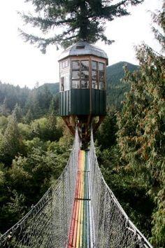 stairway to heaven-rainbow bridge leading to observatory, Washington State