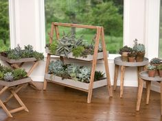 These DIY plant stand ideas can not only increase your indoor planting space but also enhance the beauty of your home. Short Plants, Tall Plants, Indoor Plants, Wooden Plant Stands, Diy Plant Stand, A Frame Chicken Coop, Old Wooden Chairs, Vintage Gardening, Frame Stand