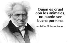 Eric Blair, Amor Animal, George Orwell, Compassion, Decir No, Einstein, Sayings, Quotes, Facebook