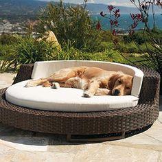 Outdoor relaxing...