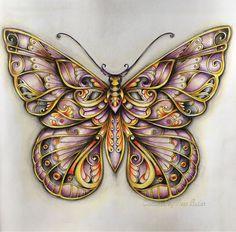 /Johanna Basford/ magical Jungle/ Ness Butler/ colouring books/ butterfly/ polychromos pencils/ Johanna Basford magical jungle/ coloured by Nessy B/