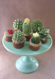 "Designer and baker Alana Jones-Mann has created adorable cupcakes topped with cactus- and succulent-shaped frosting. The cupcakes include ""sand"" made of finely processed Teddy Grahams. She has post. Cupcakes Succulents, Kaktus Cupcakes, Garden Cupcakes, Edible Succulents, Cupcakes Bonitos, Cupcakes Decorados, Beautiful Cakes, Amazing Cakes, Cupcake Recipes"