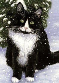 Snowflake Cat, Bridget Voth