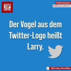 Der Vogel aus dem Twitter-Logo heißt Larry. #twitter #socialmedia #tweet #name #larry #fakten Larry, Photo And Video, Twitter, Videos, Instagram, Technology, Birds