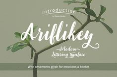 Ariflikey Typeface (30% Off) by Tooris on Creative Market