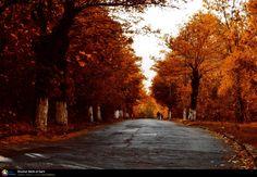 Drumul Vechi al Garii (Campina) © Victor Radulescu