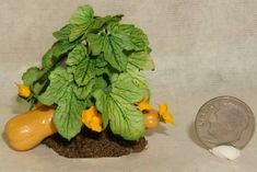 Butternut Squash in dollhouse miniature scale, 1:12 scale by CDHM Artisan Abby Benner of Mini-Quest, www.cdhm.org/user/abby