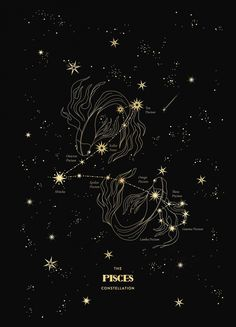 Pisces Constellation 2020 – Cocorrina & Co Ltd Star Constellation Tattoo, Zodiac Constellations, Pisces Star Constellation, Star Pisces, Astrology Pisces, Pisces Zodiac, Zodiac Art, Zodiac Signs, Poster S