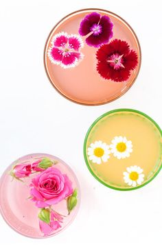 floral garnishes DIY / rosewater lemonade, chamomile whiskey, greyhound / recipe