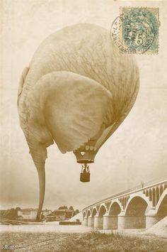 Surreal Elephant Illustrations | Hot Air Balloon