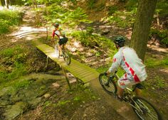 Turkey Point Mountain Bike Club offers over of trails! Bike Trails, Hiking Trails, Trail Maps, Fun Events, Cycling Bikes, Beautiful Landscapes, Mountain Biking, Ontario, Outdoor Power Equipment