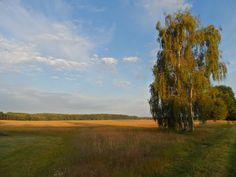 Panoramio - Photos by Uwe Mielke Bliesendorf