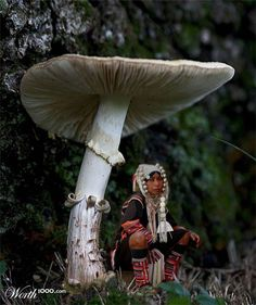 """Magical Mushrooms"" - Hilltribe woman sheltering under a very large mushroom"