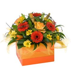 Amber - [ausSA09] Amber is a stunning gift, ideal for saying 'Congratulations', 'Happy Birthday' or 'Just Because'. This bright box arrangement pulls together this seasons best flowers in a vivid display of colour