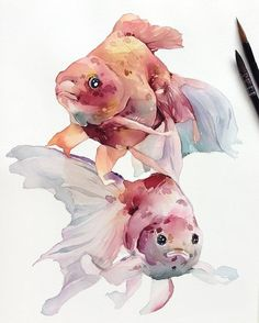 Watercolor paintings look very awesome and many people try it using various subjects. As a beginner, you must try cute animal watercolor paintings. Watercolor Fish, Watercolor Drawing, Watercolor Animals, Watercolor Illustration, Painting & Drawing, Fish Drawings, Animal Drawings, Art Drawings, Art Aquarelle