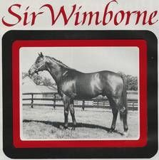 Sir Wimborne(1973)Sir Ivor- Caps And Bells By Tom Fool. 3x4 To Mahmoud, 4x4 To Pharamond II. Won National S(Eng-2), Royal Lodge S(Eng-2) Died In 1998.
