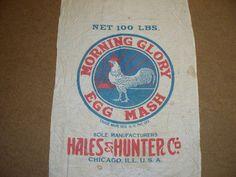 Morning Glory Egg Mash Hales & Hunter Co. Chicago, Illinois 22x37