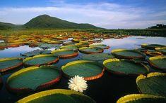 lugares hermosos - Buscar con Google