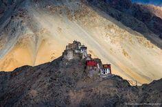 Namgyal Tsemo Monastery Leh Ladakh pictures