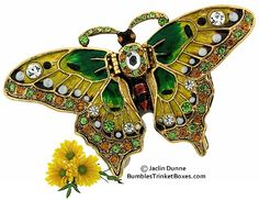 Green Butterfly Box