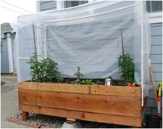 raised planter with hothouse  http://www.centsationalgirl.com/2009/05/diy-with-mr-green-thumb/