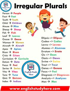 Irregular Plurals List in English - English Study Here