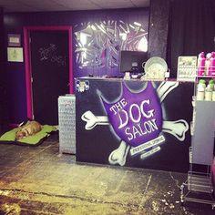The Dog Salon retail boutique