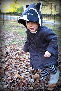Raccoon Costume, First Halloween, Costumes, Natural, Hats, Dress Up Clothes, Hat, Fancy Dress, Nature