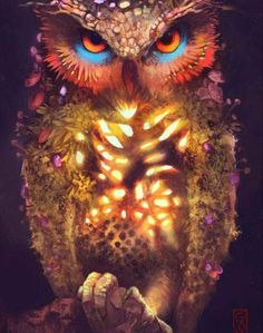 Shop for Nature Owl Diamond Painting Kit at Pretty Neat Creative with ✅ Softest canvas, Sparkliest beads ✅ Most Durable Package ✅ WARRANTY. Buy Now! Beautiful Owl, Animals Beautiful, Cute Animals, Owl Bird, Pet Birds, Owl Cat, Owl Pictures, Cute Owl, Spirit Animal