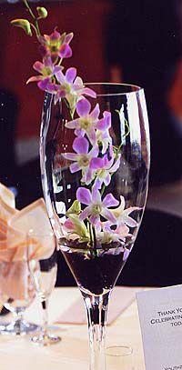 Wedding Centerpieces On Pinterest Wedding Corsages Coral Wedding Centerpieces And Centerpieces