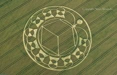 Crop Circle Images 2013 - Photography by Steve Alexander