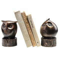 Wide-Eyed Owl Bookend
