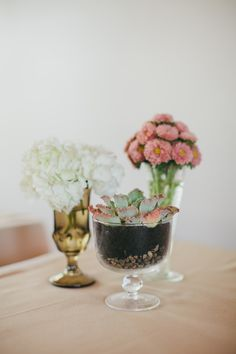Mixed vases, flowers, and succulents. Photo: M Lindsay Photography
